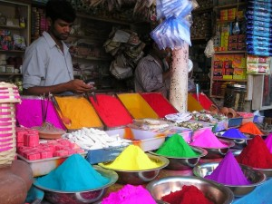 india-colors-dr-lopa-gupta